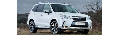 Forester 13-18